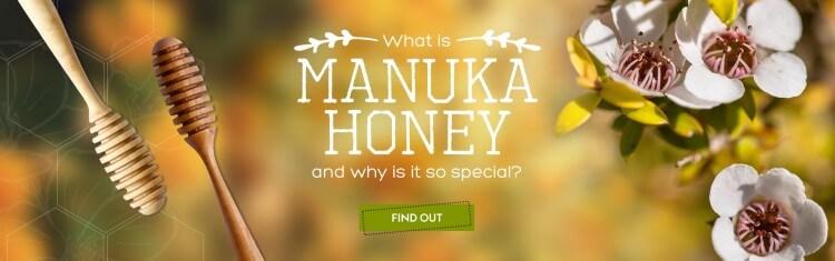 Mật ong Manuka là gì & tác dụng đặc biệt của mật ong Manuka
