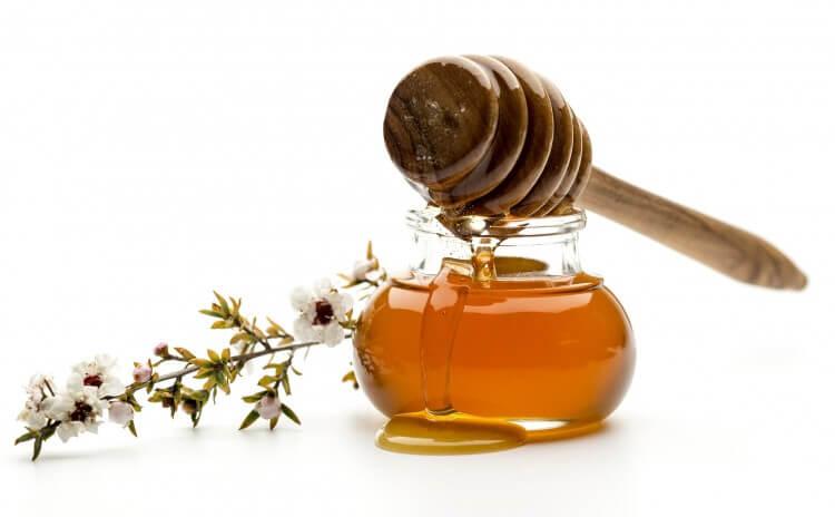 Trị viêm loét, trào ngược dạ dày với mật ong Manuka